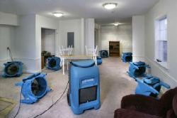 Water Damage Carpet Drying